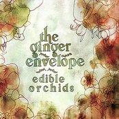 Edible Orchids