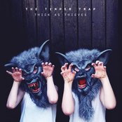 Thick as Thieves (Deluxe Edition)