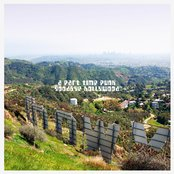 Goodbye Hollywood