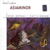 Kedi Rüyasi