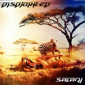 Safari (2012) Single