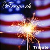 Firework (Salute to Katy Perry)