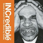 INCredible Sound of Drum 'n' Bass (disc 1: Spectrum) (Mixed by Goldie)