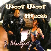 Woof Woof Meow