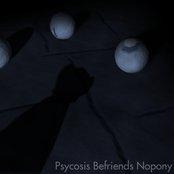 Psycosis befriends Nopony