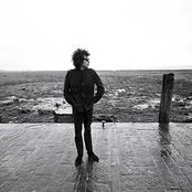 Bob Dylan - Girl From the North Country Songtext und Lyrics auf Songtexte.com