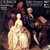 Bach: 8 Violin Sonatas