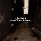Echoes In The Alleyway: A Tribute to Doves