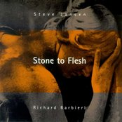 Stone to Flesh