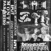 Hopeful About The Future (split tape with Desinence Mortification)