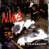 Niggaz4Life cover art