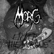 Enter the Morgue
