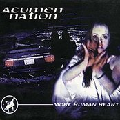 More Human Heart