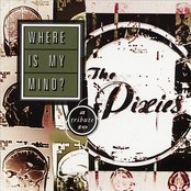 Where Is My Mind: A Tribute To The Pixies