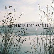 Asher Deaver