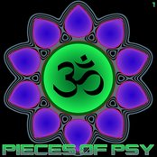 Pieces of Psy 1