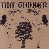 Red Cloud West / Big Timber