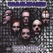 Totes Fleisch 1994-98 (Ueberarbeitete Version