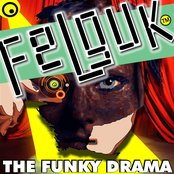 Felguk - The Funky Drama