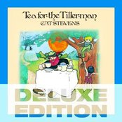 Tea for the Tillerman deluxe set