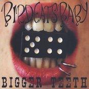 Bigger Teeth