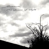 The Absence of Blight