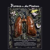 Lungs (Limited Edition 4 Disc Set)
