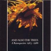 A Retrospective 1983 - 1986