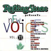 Rolling Stone: New Voices, Volume 11