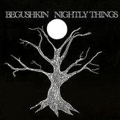 Nightly Things