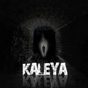 Kaleya