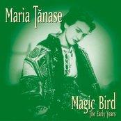 Magic Bird - The Early Years