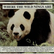 Where The Wild Nings Are