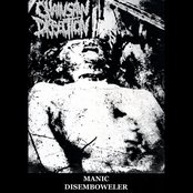 Manic Disemboweler - 8 CD Set