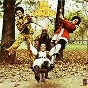 The Staple Swingers