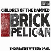 Brick Pelican (The Greatest Mystery of All)