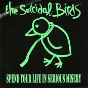 Spend Your Life in Serious Misery