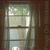 Frogs on Windows