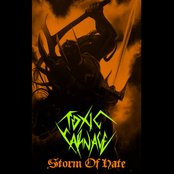 Storm Of Hate