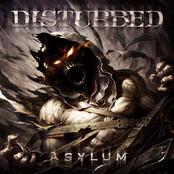 Asylum (Deluxe)