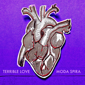 Cover artwork for Terrible Love
