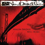 Avalon Bridge Will Burn