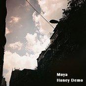 Honey Demo