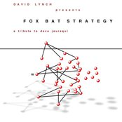 Fox Bat Strategy