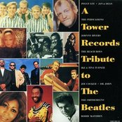 A Tower Records Tribute to the Beatles