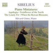 SIBELIUS: Piano Music, Vol. 4