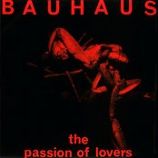The Passion of Lovers