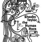 The Human Horn