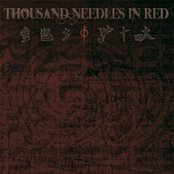 Thousand Needles In Red