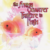 The String Quartet Tribute to Phish